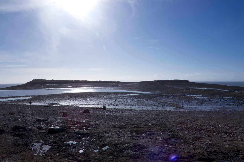 Sully Island at Low Tide