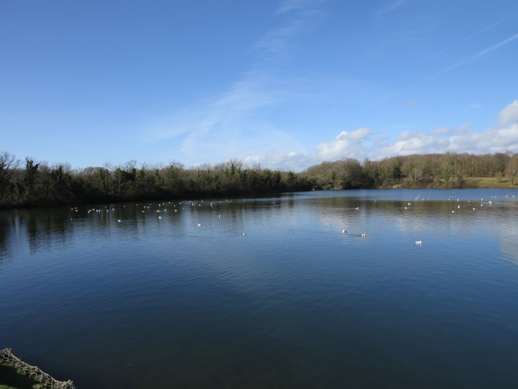 Cosmeston Lakes