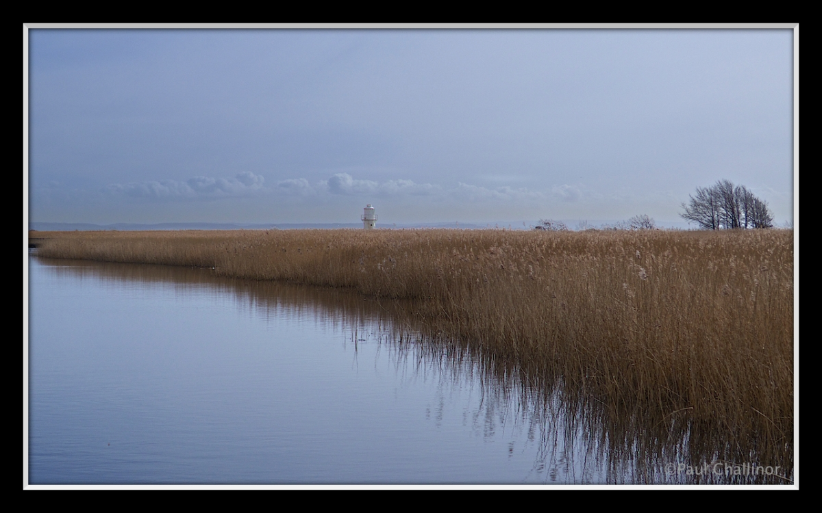 East Usk Lighthouse appearing above the reed beds. Its possible to stand next to the lighthouse.