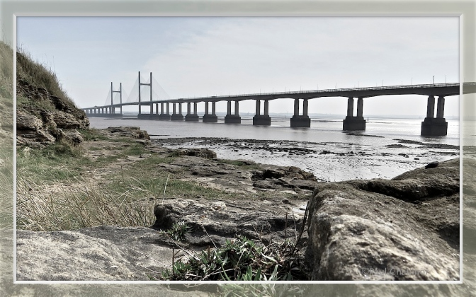 New Severn Bridge from the foreshore