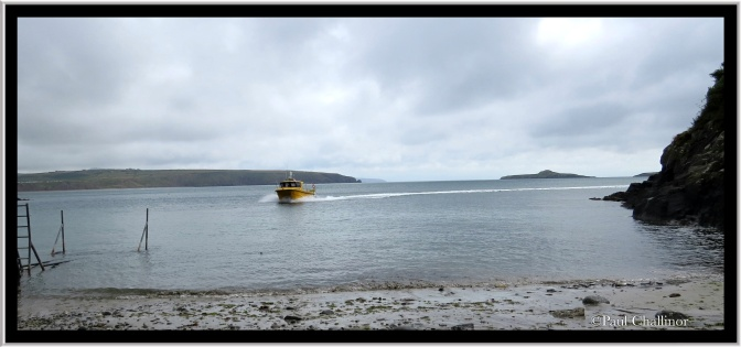 The ferry arriving at Porth Meuthwy.