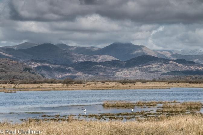 Afon Glaslyn  150404 2