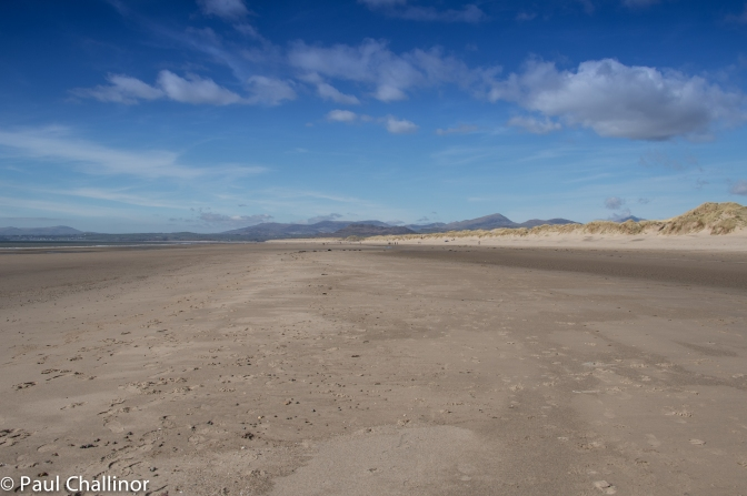 The beach seems to stretch on for ever. The scale can be gauged by the tiny dots that are people in the distance.