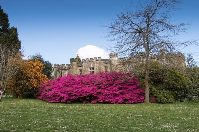 Clyne Castle