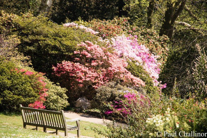 A great place for a cup of coffee. There were plenty of remembrance benches at the  top of the gardens