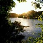 Lilies and King Kong – Bosherton Ponds. Welsh 100 – No 29