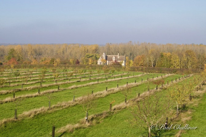 Restored orchards. The planting is based upon archeology. not much left on the trees to munch on though.