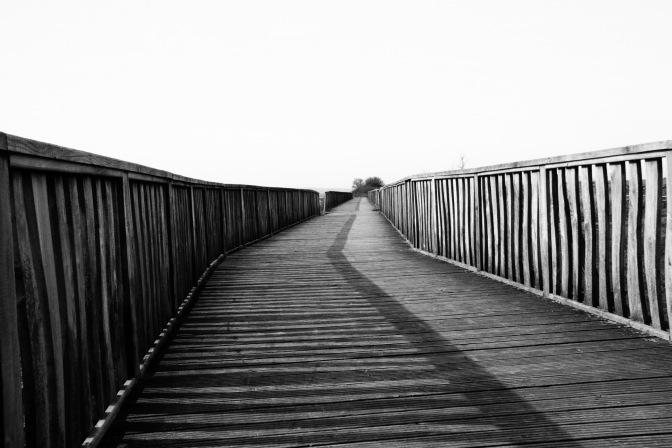 Loughor Estuary 170325